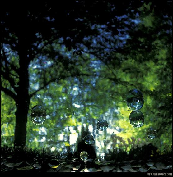 Сон 5 - пузырики и оборотень