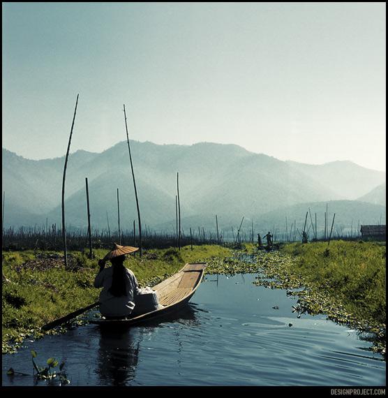 На озере Инле плодородный слой пускают плавать по поверхности воды, используя при этом шесты как крепления.