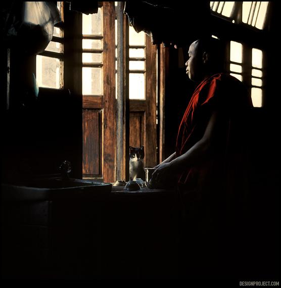 Монастырь посередине озера, где монахи дрессируют кошек –необычайно трогательное место.