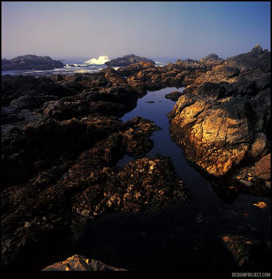 Вода отходит, обнажая острые, как бритва скалы, в расселинах образовываются натуральные бассейны, в которых продолжает жить океан. Открытая книга флоры и фауны. От водорослей до звезд и рыб – все буквально под ногами беспомощно пытается пережить временное отсутствие воды.