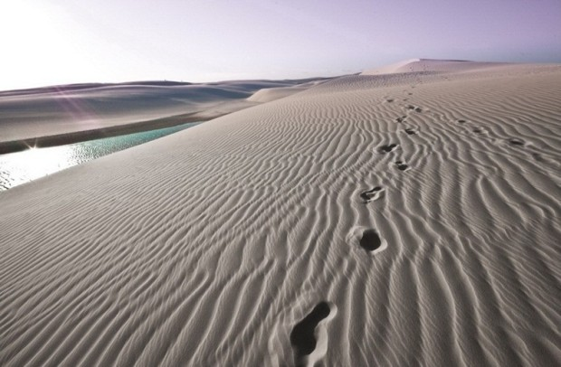 966_Lencois_Maranhenses_National_Park_Brazil_photo201
