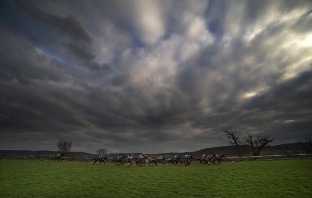 Скаковые лошади с жокеями на ипподроме Taunton 7 января 2013 года, Тонтон, Англия. Алан Crowhurst