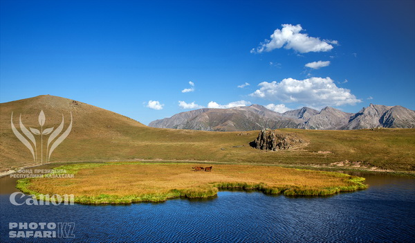неизвестный казахстан