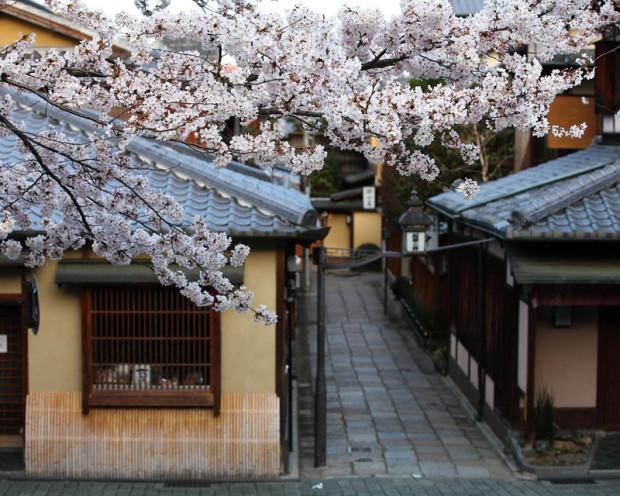 kioto-20