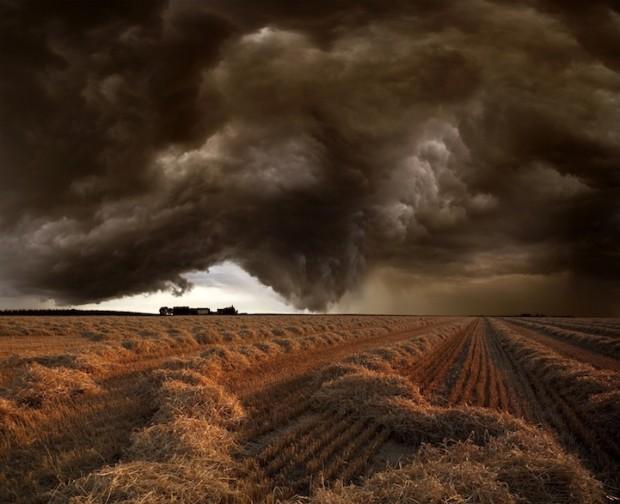 буря на поле