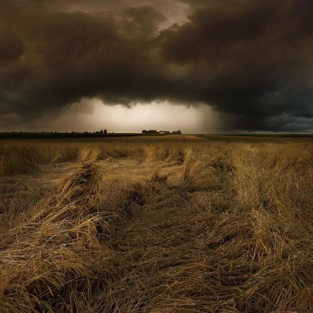 буря над полем