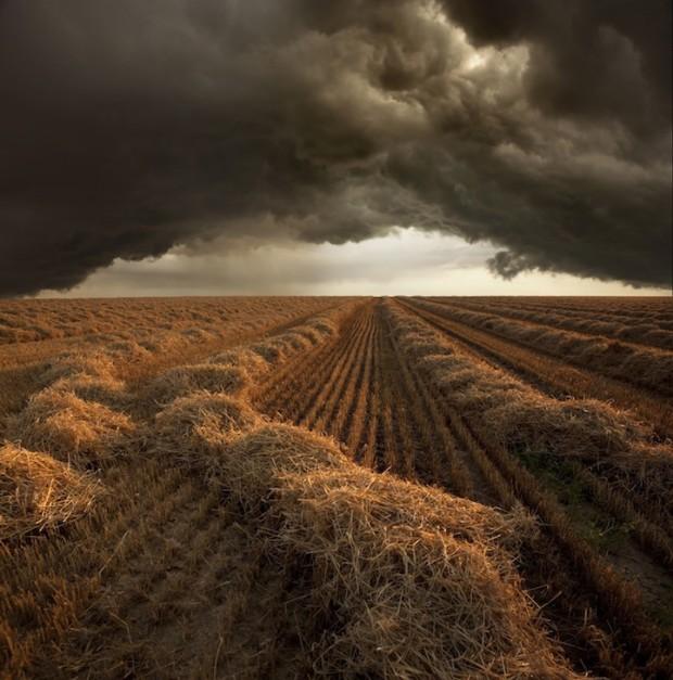 поле с бурей