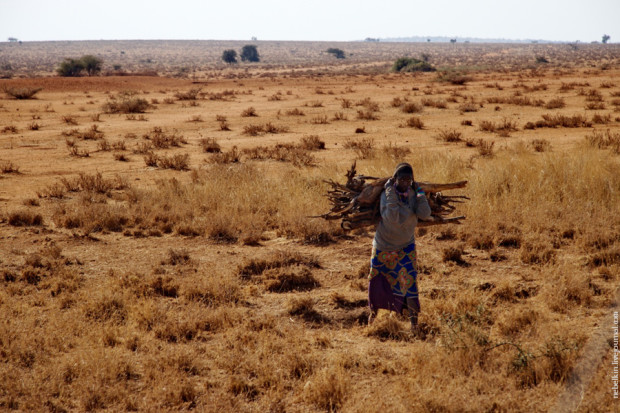 Фотопутешествие по Кении