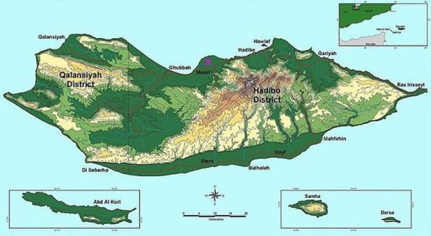 Остров Сокотра находится в 250 километрах от Аравийского.