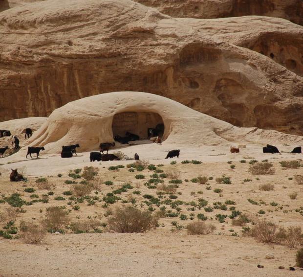 скалы и пустыня