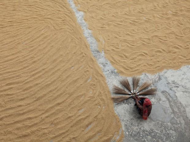 Работник рисовой мельницы в Бангладеш.