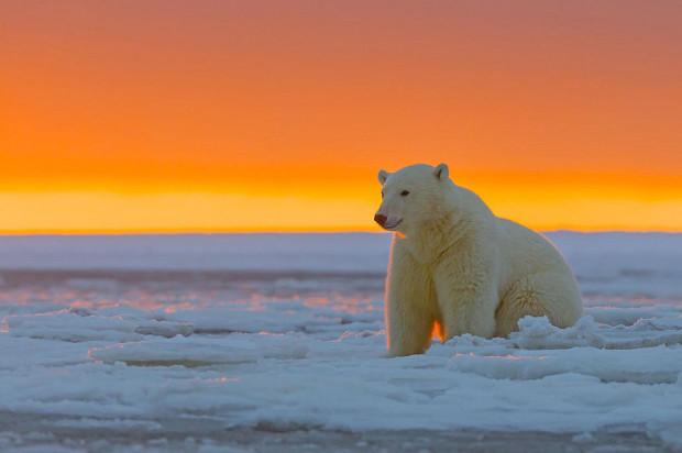 закат на Аляске