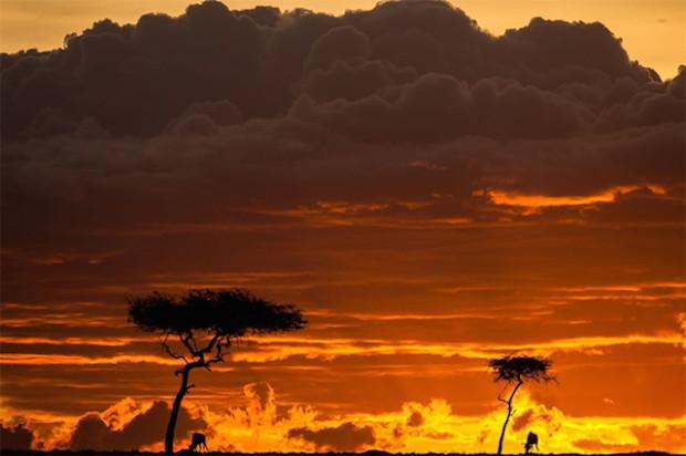 закаты в африке