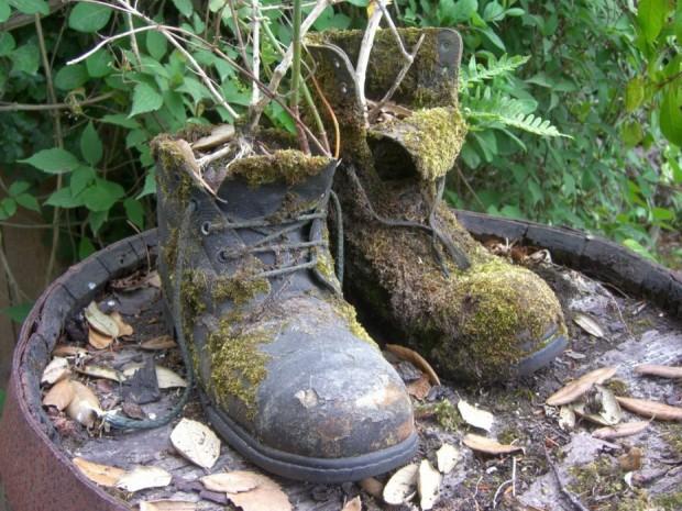 клумба-ботинки