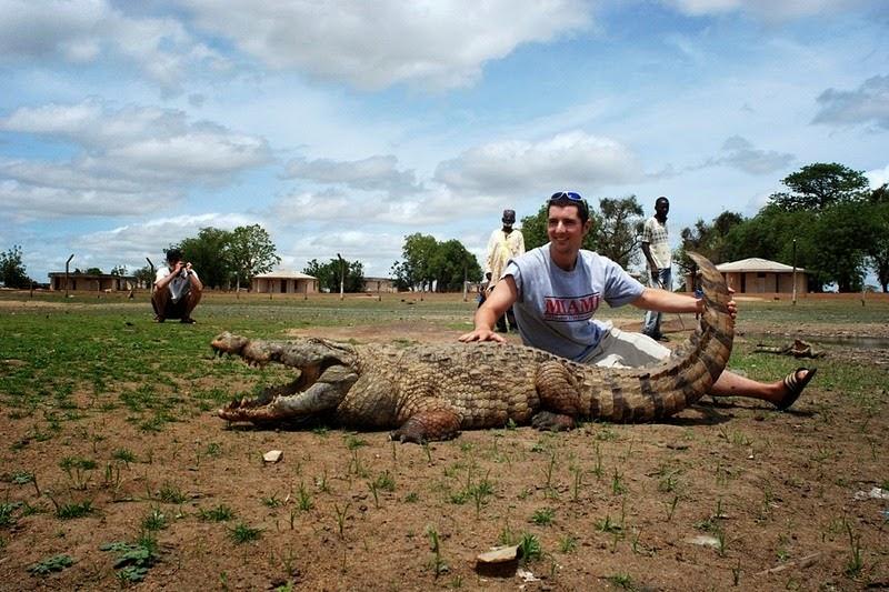 PagaCrocodiles04