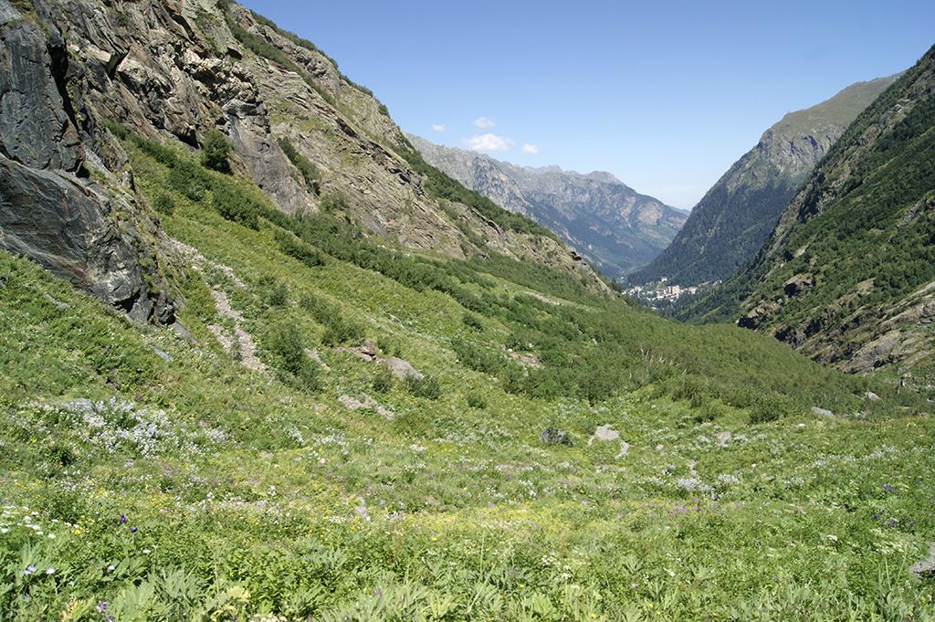 Позади расстилаются альпийские луга. Впереди, в общем-то, они же