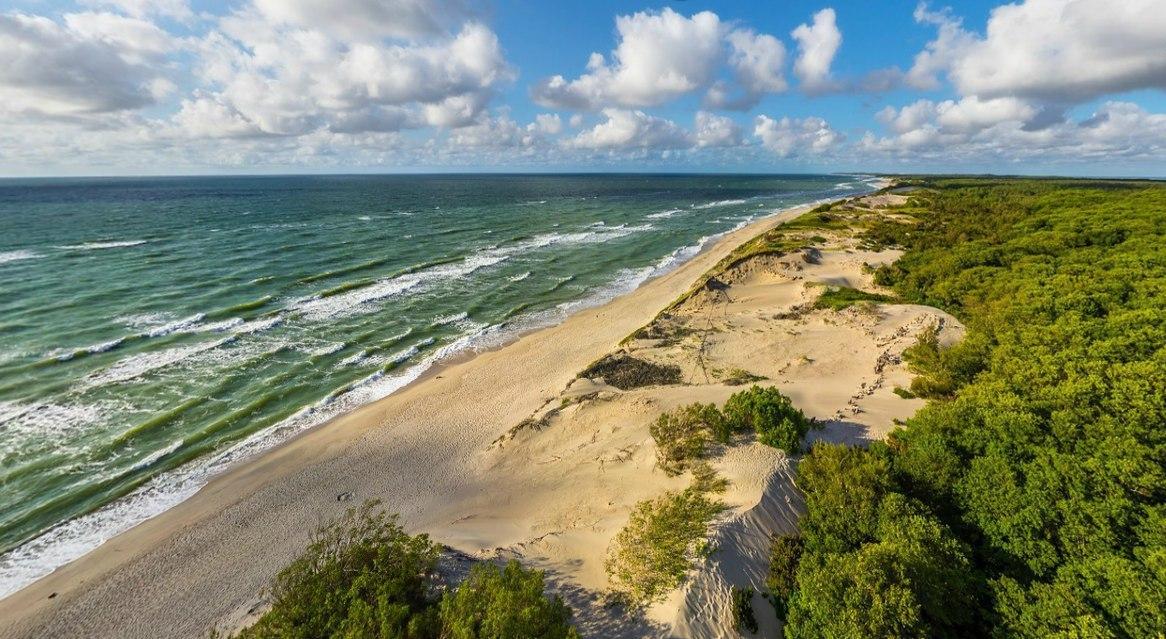Побережье Балтийского моря. Авандюна.