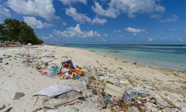 Справедливости ради - пляж надо убрать от мусора