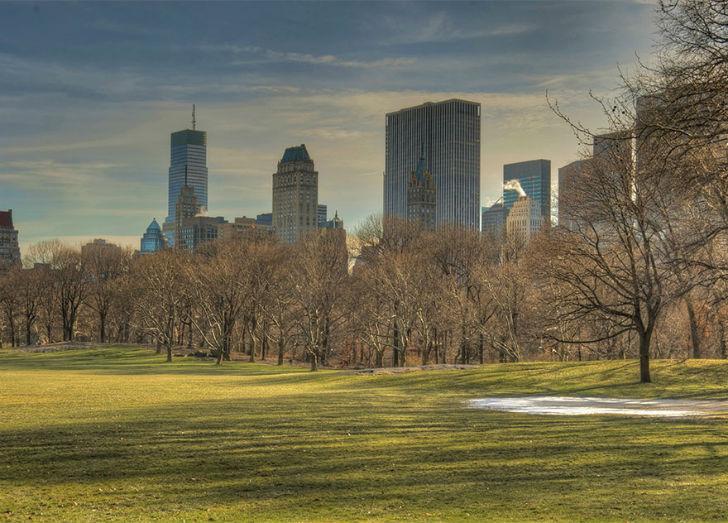Прогулка в центральном парке Нью-Йорка