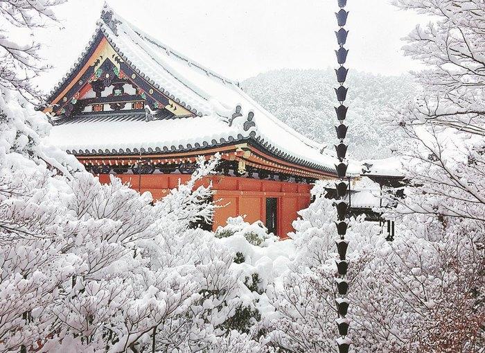 heavy-snowfall-kyoto-japan-2017-23-587dcc66573ac__700