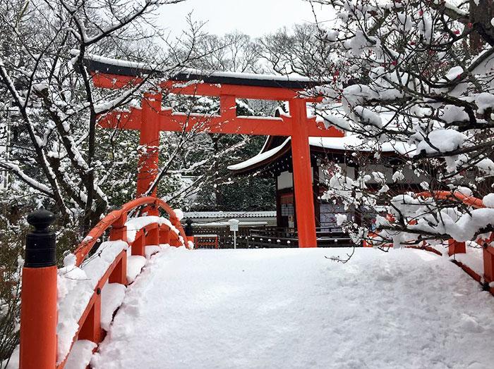 heavy-snowfall-kyoto-japan-2017-25-587dcfe58acce__700