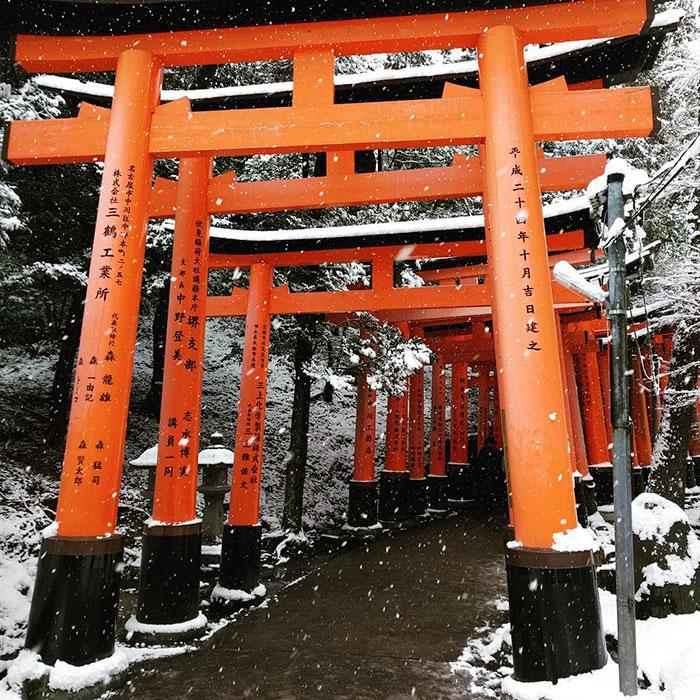 heavy-snowfall-kyoto-japan-2017-31-587dd1d8847d2__700