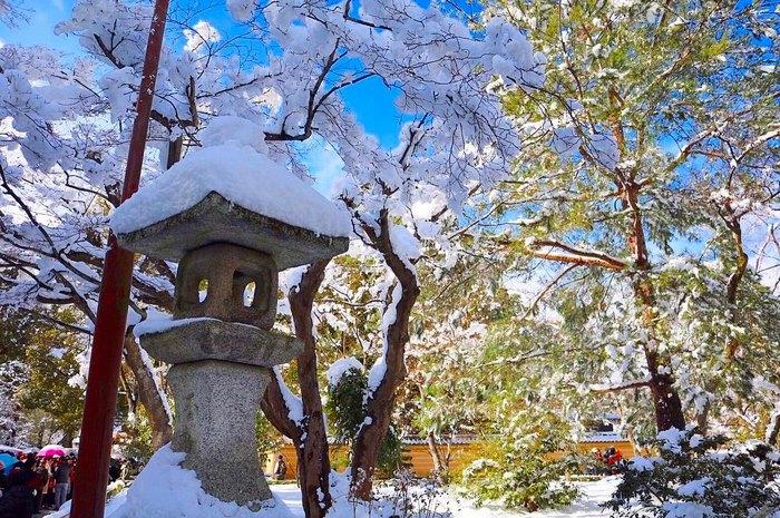 heavy-snowfall-kyoto-japan-2017-5-587dcc28e7deb__700
