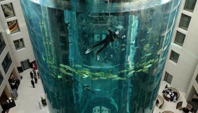 аквадом