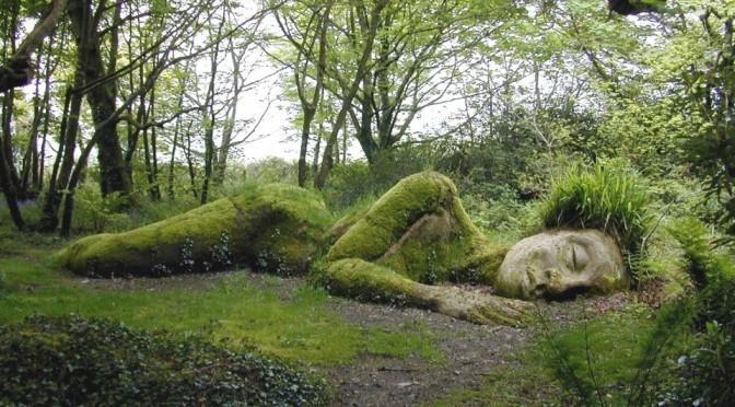 сон на траве