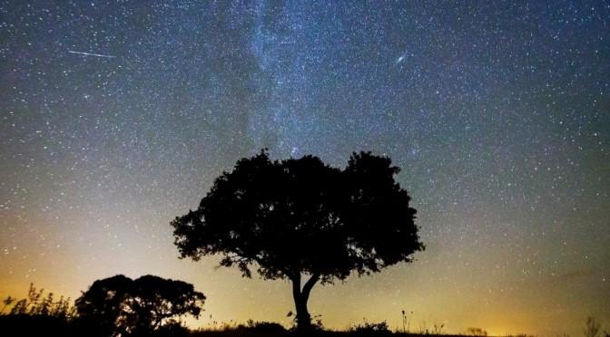 Заповедник звёздного неба