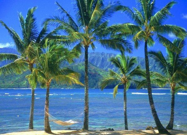 Что делать на Гавайях, если надоели пляжи?