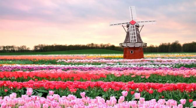 Оптимальное время для отдыха в Голландии.