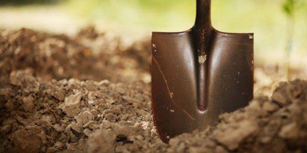Способы и методы внесения органических удобрений