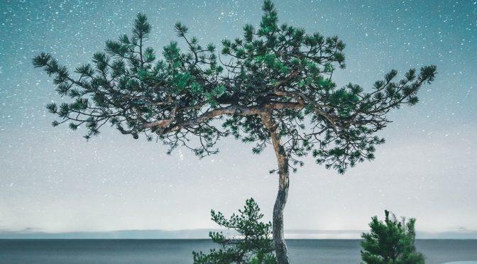 Тихая красота сельской Финляндии